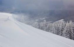 Красивый ландшафт зимы с снегом покрыл деревья и карниз снега стоковое изображение rf