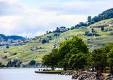 Красивый ландшафт лета террасы виноградника женевского озера, Lavaux и Альпы, деревня Lutry, Швейцария, Европа Стоковое Фото
