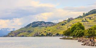 Красивый ландшафт лета террасы виноградника женевского озера, Lavaux и Альпы, деревня Lutry, Швейцария, Европа Стоковое фото RF
