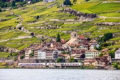Красивый ландшафт лета террасы виноградника женевского озера, Lavaux и Альпы при поезда идя мимо, швейцарец Ривьера, Швейцария Стоковые Фотографии RF