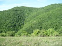 Красивый ландшафт на Jasenje, Сербии стоковые фотографии rf