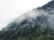 Красивый ландшафт Норвегии осени Горы с туманом Стоковые Фото