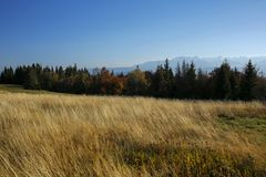 Красивый ландшафт осени гор Gorce и Tatra Стоковая Фотография RF