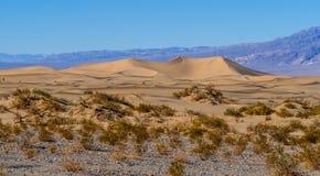 Красивый ландшафт песчанных дюн Mesquite плоских на Death Valley Стоковая Фотография RF