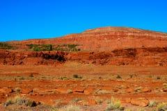 Красивый ландшафт пустыни горы с кактусами около Tuscon, Аризоны стоковые изображения