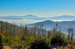 Красивый ландшафт утра горы осени стоковые изображения rf