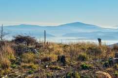 Красивый ландшафт утра горы осени стоковые фото