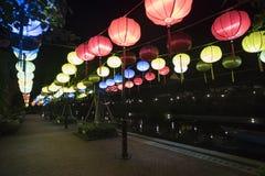 Красивый международный загораться фонарика стоковые фото