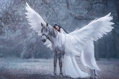 Красивый, молодой эльф, идя с единорогом Она носит неимоверный свет, белое платье Девушка лежит на лошади Sleepin стоковое изображение rf