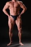 Красивый мышечный культурист Стоковое Изображение RF