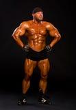 Красивый мышечный культурист Стоковые Фотографии RF