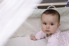 Красивый младенец 6 месяцев Стоковая Фотография RF