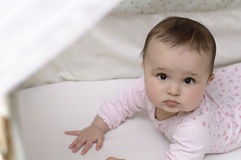 Красивый младенец 6 месяцев Стоковая Фотография