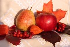 Красивый натюрморт осени Яблоко и груша стоковая фотография rf
