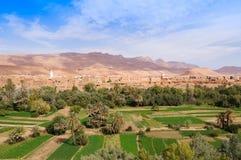 Красивый оазис в Tineghir, Марокко стоковая фотография