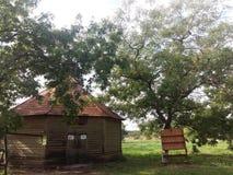 Красивый дом в лесе стоковые изображения rf