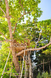 Красивый дом на дереве на пляже Radhanagar на острове Havelock - Андаманских островах, Индии стоковое изображение