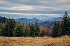 Красивый осенний ландшафт горы стоковое фото rf