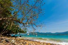 Красивый остров около Koh Chang Стоковые Фото