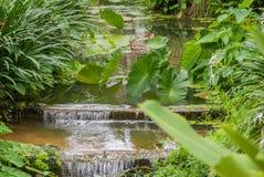 Красивый остров Пхукета Таиланда Стоковое Изображение
