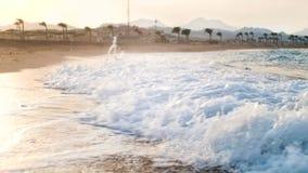 красивый отснятый видеоматериал замедленного движения 4k океанских волн свертывая на песчаном пляже на свете захода солнца сток-видео