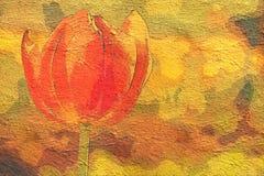 Красивый один красный тюльпан в саде - крупный план Стоковое фото RF