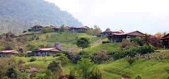 Красивый панорамный взгляд домов в горах в Коста-Рика с зелеными джунглями стоковая фотография rf