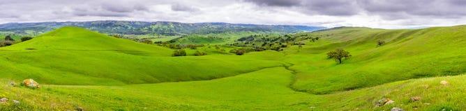 Красивый панорамный вид зеленых холмов и долин на юге область Сан-Хосе, южная San Francisco Bay, Калифорния стоковые изображения