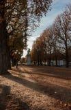 Красивый парк в Париже во время осени стоковое фото