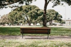 Красивый парк города в Лиссабоне в Португалии в области Belem Деревянная скамья в центре Много деревья и дорога Стоковые Фото