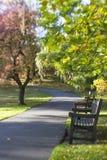 Красивый парк на прекрасный день осени стоковое фото