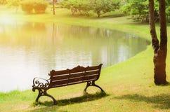 Красивый парк света утра публично стоковые изображения rf