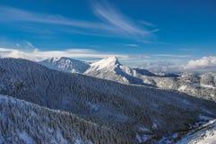 Красивый пейзаж больших снежных горных пиков Стоковая Фотография RF