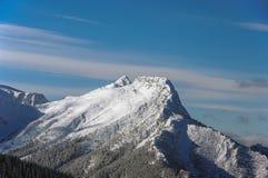 Красивый пейзаж большого снежного горного пика Стоковые Фотографии RF