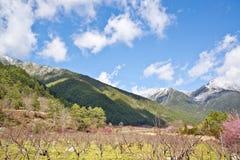Красивый пейзаж в Тайване Стоковая Фотография