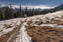 Красивый пейзаж горной тропы в горах Tatra Стоковые Фотографии RF