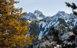 Красивый пейзаж горы зимы стоковая фотография rf