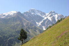 Красивый пейзаж гор Кавказа Стоковая Фотография