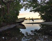 Красивый пейзаж задней воды с деревянными весельной лодкой и птицей Стоковая Фотография