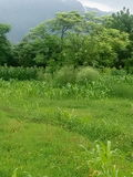 Красивый пейзаж нашей деревни Стоковое Фото