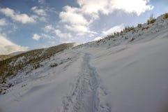 Красивый пейзаж снежных гор Стоковое фото RF