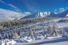 Красивый пейзаж снежных гор Стоковое Фото