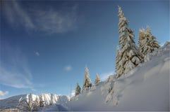 Красивый пейзаж снежных гор Стоковые Фотографии RF