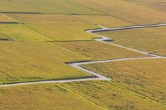 Красивый пейзаж страны рисовых полей Стоковое Изображение RF