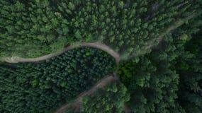 Красивый пейзаж с трутнем Стоковое Изображение