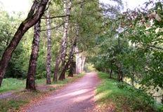 Красивый переулок осени в парке города Стоковое Изображение