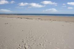 Красивый песочный пляж Ballybunion Стоковые Фото