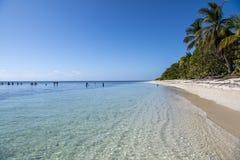 Красивый пляж в тропах стоковые изображения
