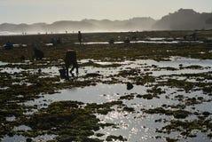 Красивый пляж в Jogjakarta, Индонезии Стоковые Изображения RF