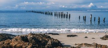Красивый пляж на Bridport, Тасмании, Австралии Стоковая Фотография
